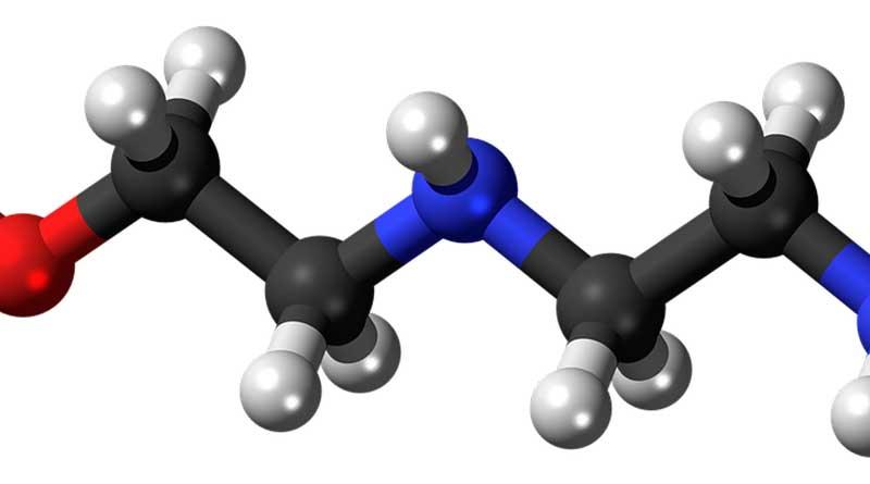 Cómo funciona el ciclo del nitrógeno